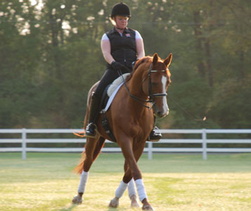 Dressage, By Definition, Is Simply Training The Horse. Correct Dressage  Training Increases Awareness And Is Beneficial For Any Horse, Any Rider And  Any ...
