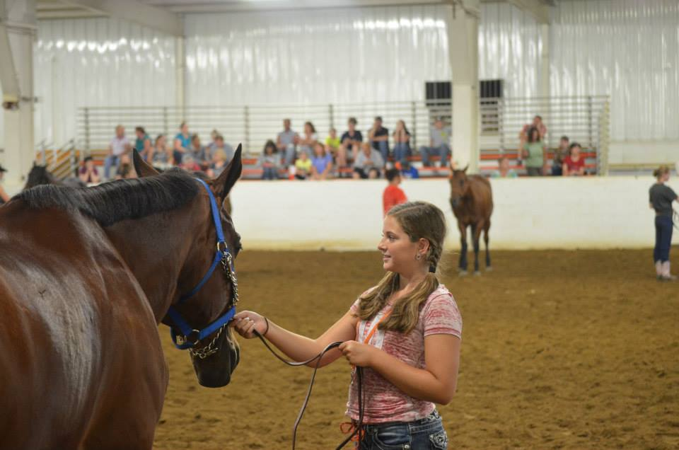 Youth Showmanship 2014.jpg
